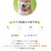 ライブ配信ナビのイチナナアカウント開設!